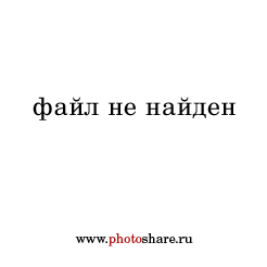 http://www.photoshare.ru/data/0/146/3/3m0czb-7do.jpg?1